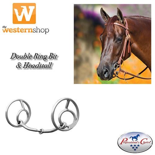 Bob Avila Double Ring Bit and Headstall