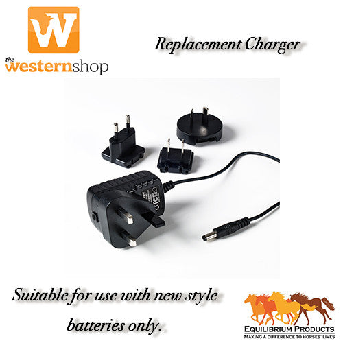 Equilibrium Replacement Battery Charger