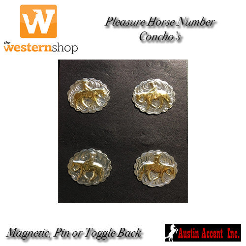 Austin Accent Pleasure Horse Number Concho's