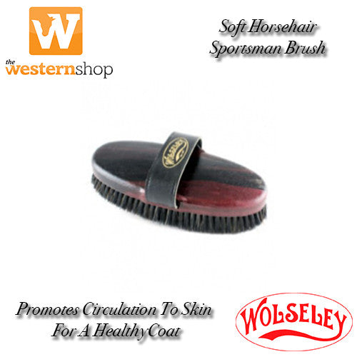 Wolseley Sportsman Body Brush
