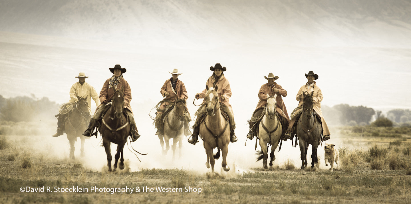 The One Stop Western Shop® Home Of Quality Western Saddlery In The ...