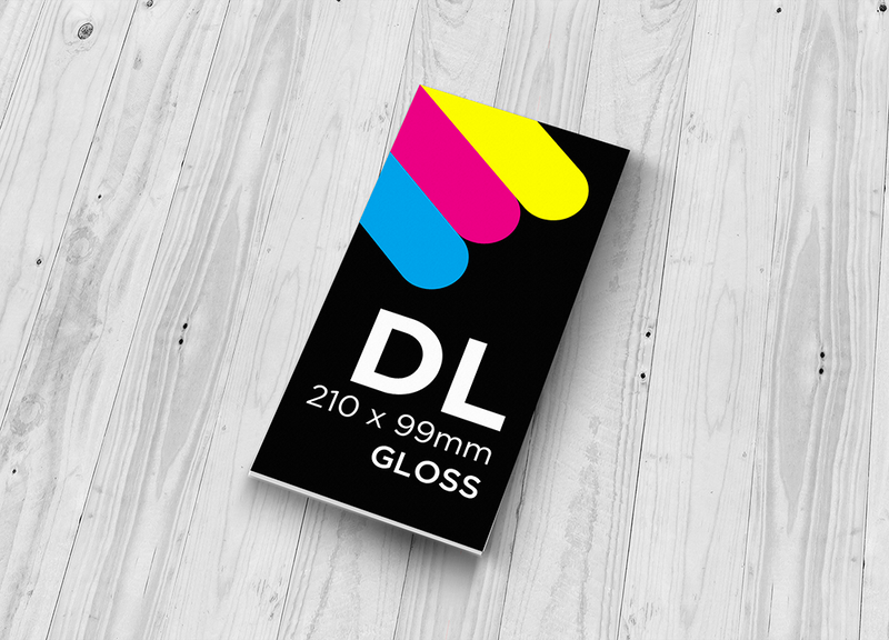 DL Flyer - Single Sided Gloss