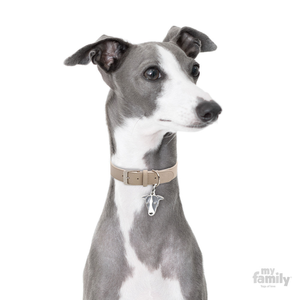 [product vendor]Friends Greyhound Whippet Tag CharmDog