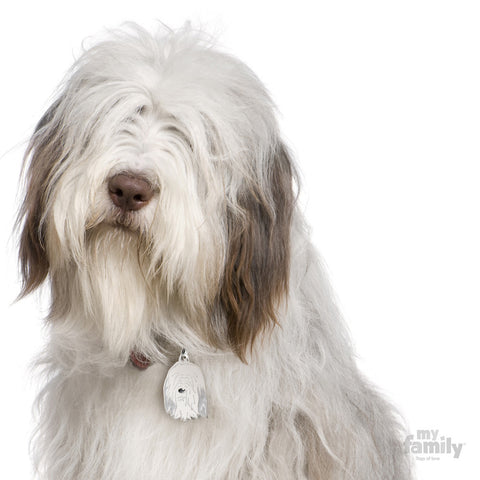 Friends Bearded Collie Tag Charm
