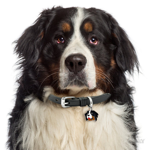 [product vendor],Friends Bernese Mountain Dog Tag Charm,Dog
