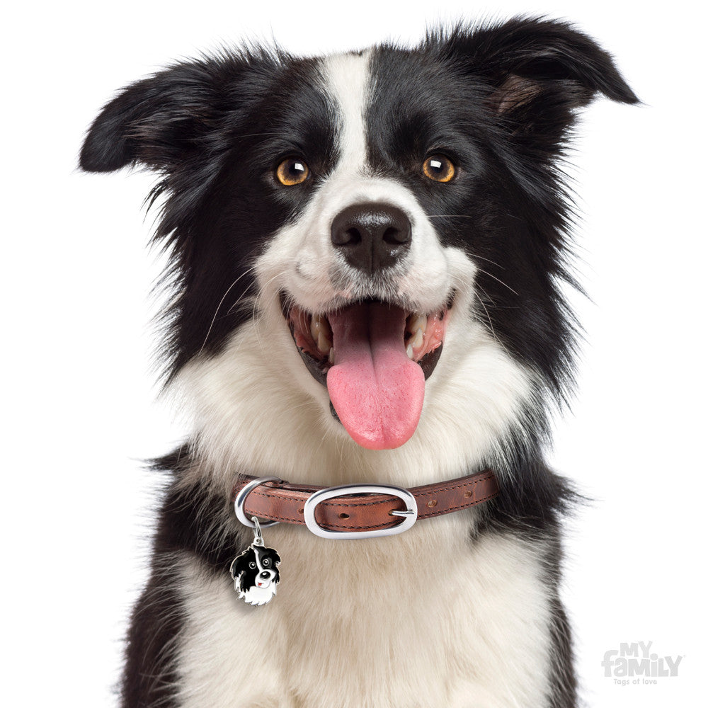 Friends Border Collie Tag Charm