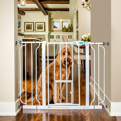 "[product vendor]44"" Extra Wide Pet GateDog"