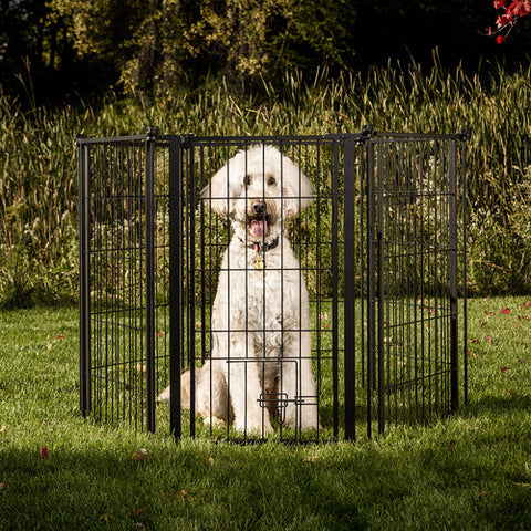 "[product vendor],144"" Extra Wide Pet Gate Outdoor,Dog"