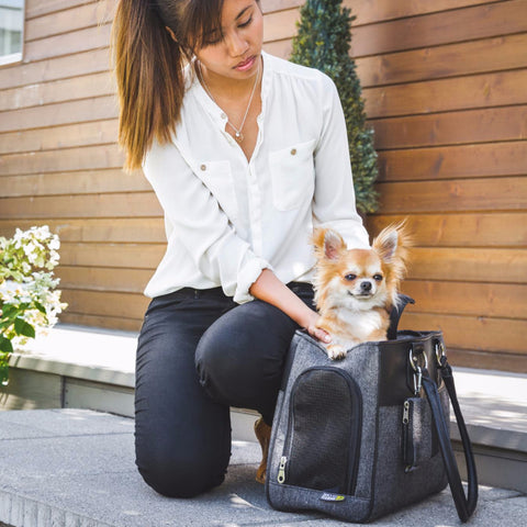 [product vendor],Lux Pet Carrier,Dog