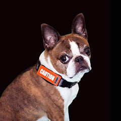 [product vendor],Bark Notes Collar Signs,Dog