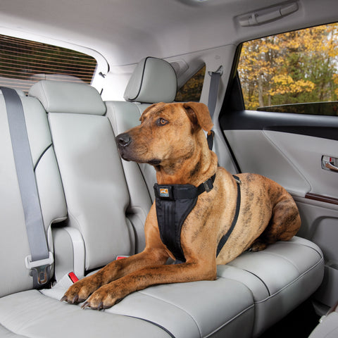 [product vendor],Smart Seatbelt Car Harness,Dog