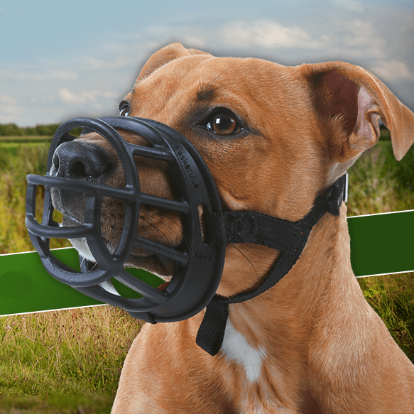 Company Of Animals Baskerville Ultra Muzzle Canvasback
