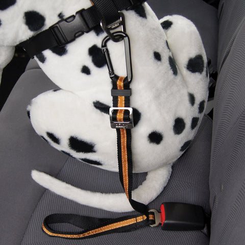 [product vendor],Direct to Seatbelt Tether,Dog