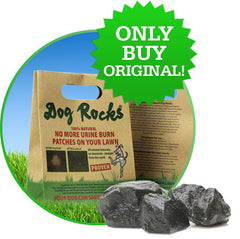 [product vendor],100% Natural Grass Saving Rock,Dog