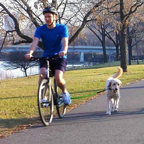 [product vendor],Bicycle Dog Trotter,