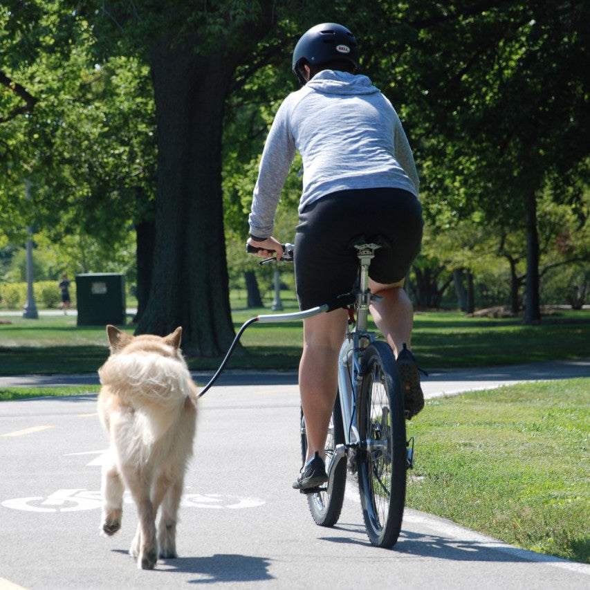 [product vendor],Cycleash Universal Bicycle Attachment,Dog