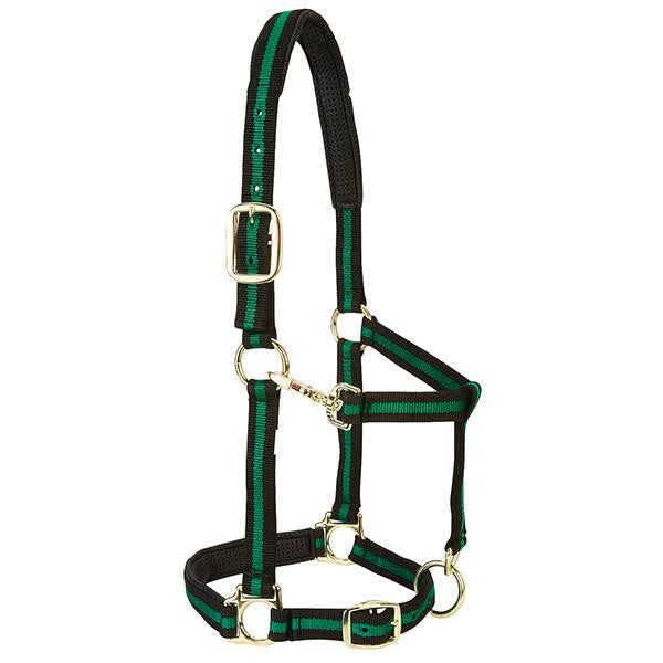 Halter Padded Adjustable