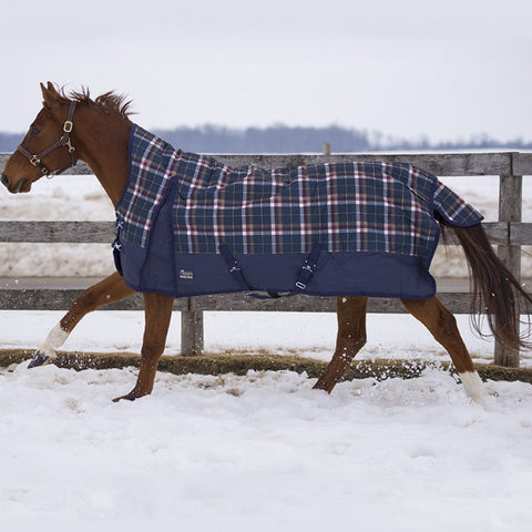 [product vendor],Legacy Storm Insulated Sheet,Horse