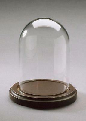 Glass Dome with Wood Base