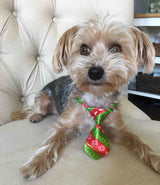 Holiday Ties for Dogs | SimpleWag All-Natural Treats