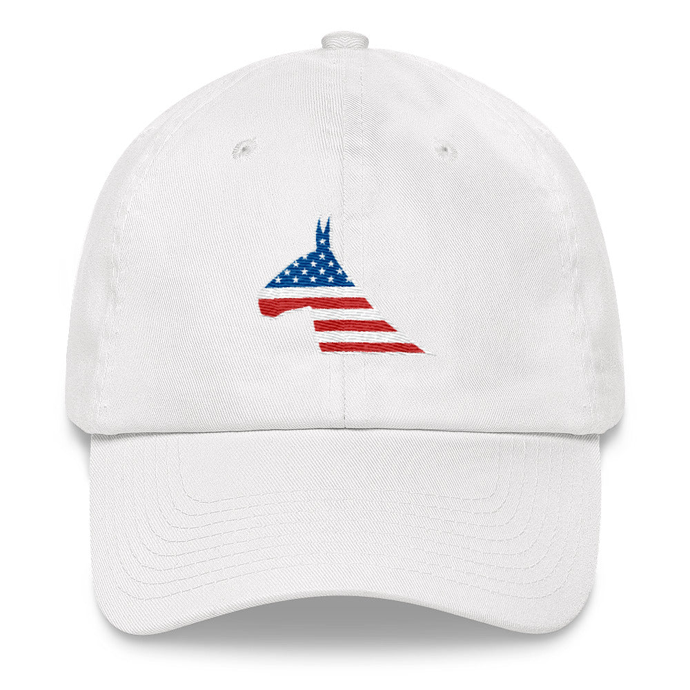 4TH OF MULE - Dad Hat