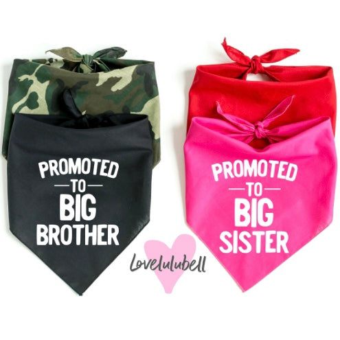 Promoted to Big Brother & Promoted Big Sister | Dog Bandana | Sold Individually