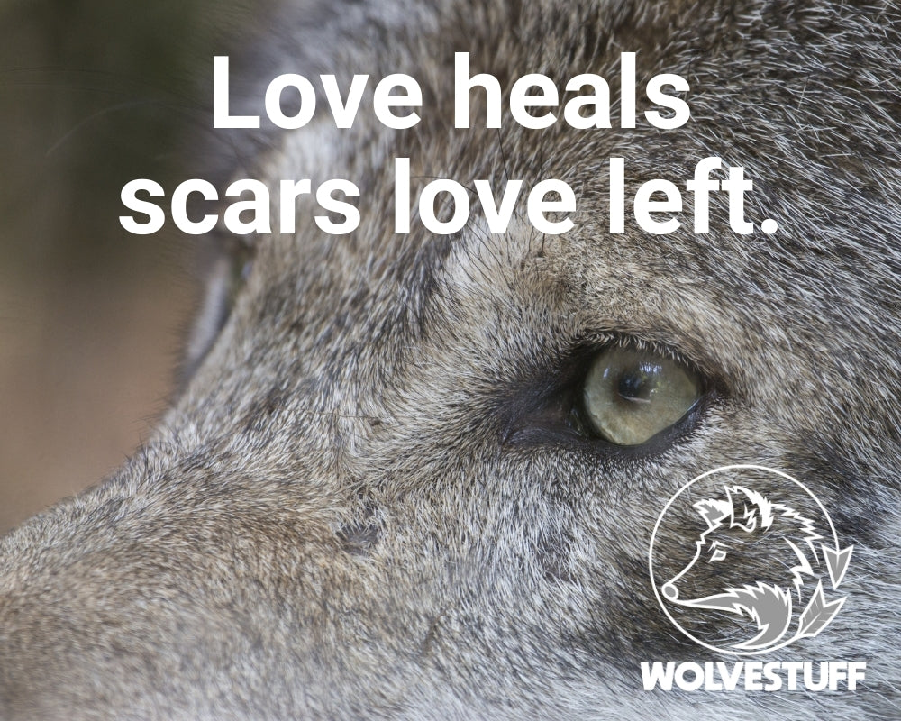 Wolf quote - Love heals scars love left