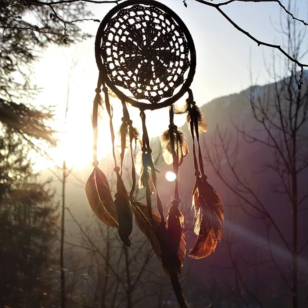 Dream Catchers: Grasp Your Destiny