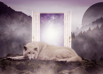 The Meaning of Wolves in Our Dreams