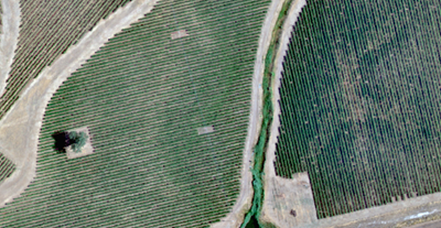 True colour image overview of vineyard property