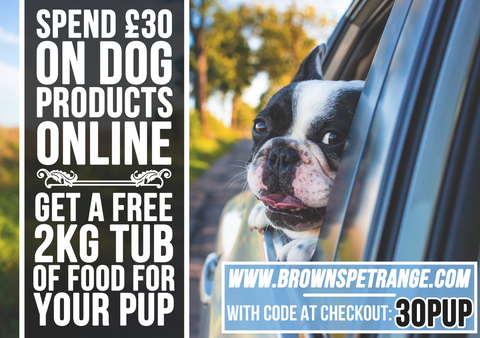 A Free 2kg Tub of Signature Dog Food