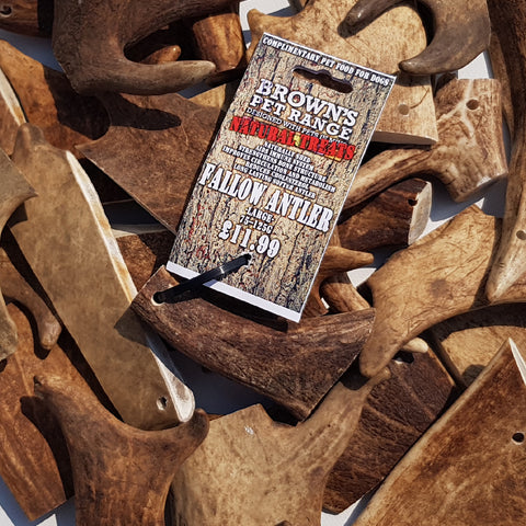 Naturally Shed Antler Chews