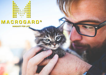 Our Cat Food, Purr-Fect Paws Is Even Better with MacroGard®!