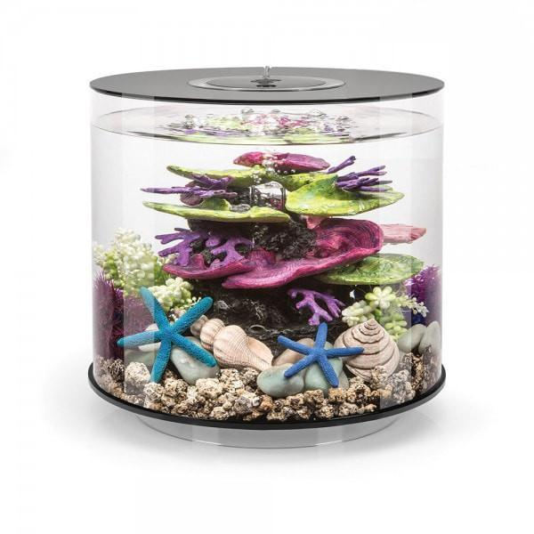 biOrb Tube MCR 35 Aquarium - 35 Litre - Black (LAST ONE) - Fish Tank - Browns Pet Range