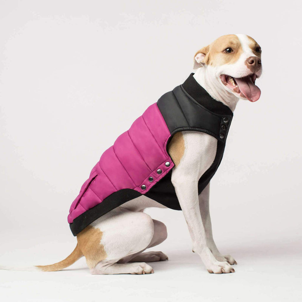 Canada Pooch | Summit Stretch Vest (Plum) SIZE 20-28 - Dog Coat - Browns Pet Range