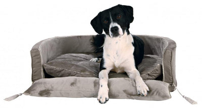 King Of Dog Beds - Dog Accessories - Browns Pet Range