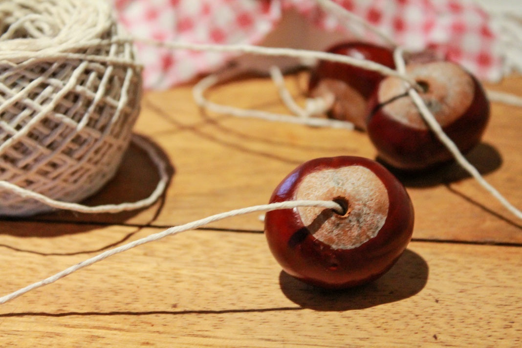 It's a Conker revolution! Let the games begin!