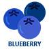 Blueberry Flavoured E-Liquid | Blueberry E-Juice | Vape World Australia