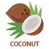 Coconut Flavoured E-Liquid | Coconut E-Juice | Vape World Australia