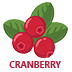 Cranberry Flavoured E-Liquid | Cranberry E-Juice | Vape World Australia