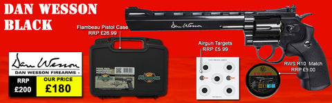 "Dan Wesson 8"" Black Air Pistol Package Deal"