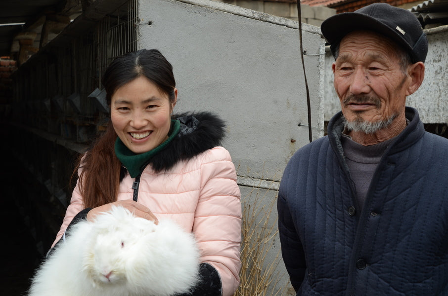 mrs xu and her father hold a white angora rabbit