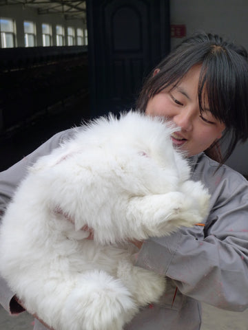 A farm worker smiles while holding an angora rabbit