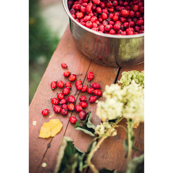 How to use Organic Rosehip Oil?
