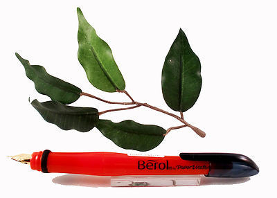 Berol Handwriting Fountain Pen with Blue Ink for Children