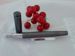 X-Pen Concerto Fountain Pen Gunmetal Embossed Body
