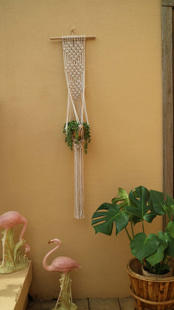 Queen of Hearts Pot Hanger DIY Macrame Kit by Knot Modern