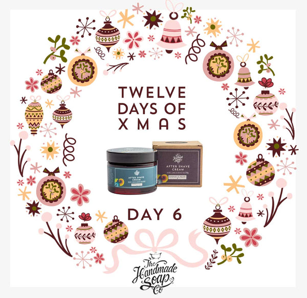 12 Days of Christmas - DAY 6