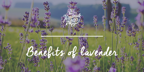 The benefits of lavender