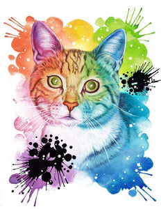 Painted Paws Uk Gift Vouchers